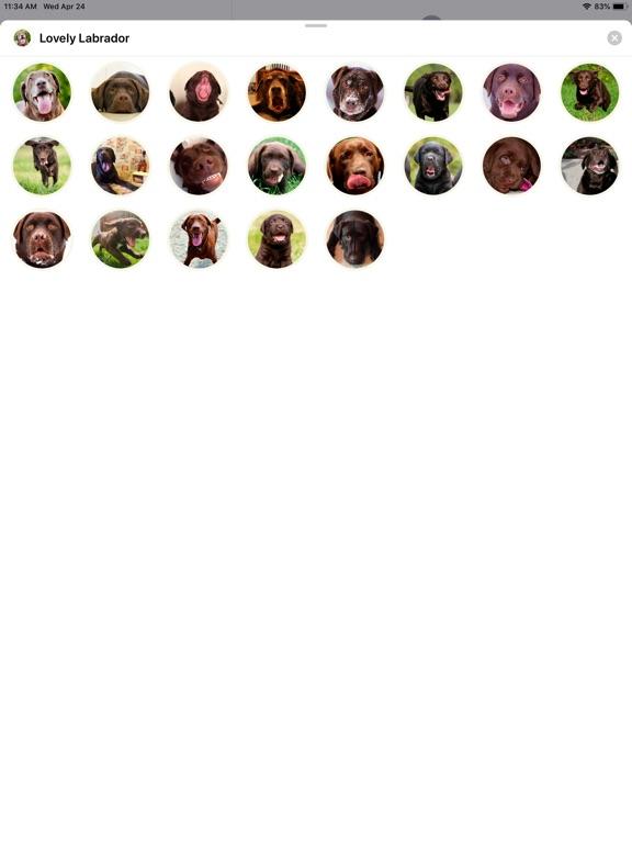 Lovely Labrador Sticker Pack screenshot #1
