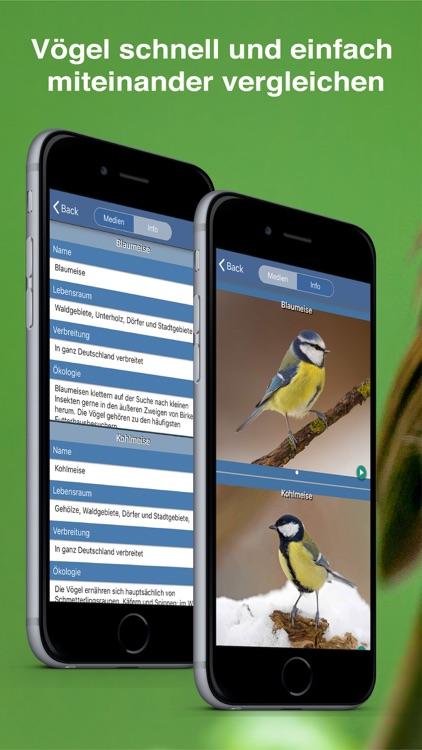 Bird Id - Garden Birds Germany screenshot-4