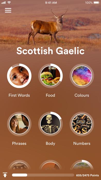 Learn Scottish Gaelic Screenshot 1