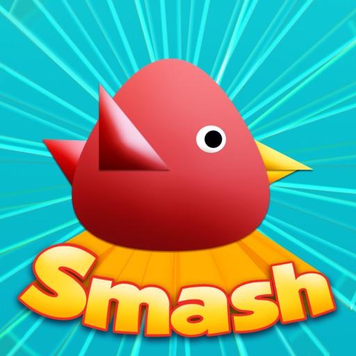 Cool Birds Game - Fun Smash