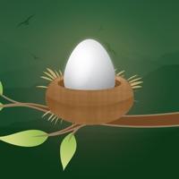 Codes for Easter Egg Tap To Jump Basket Hack