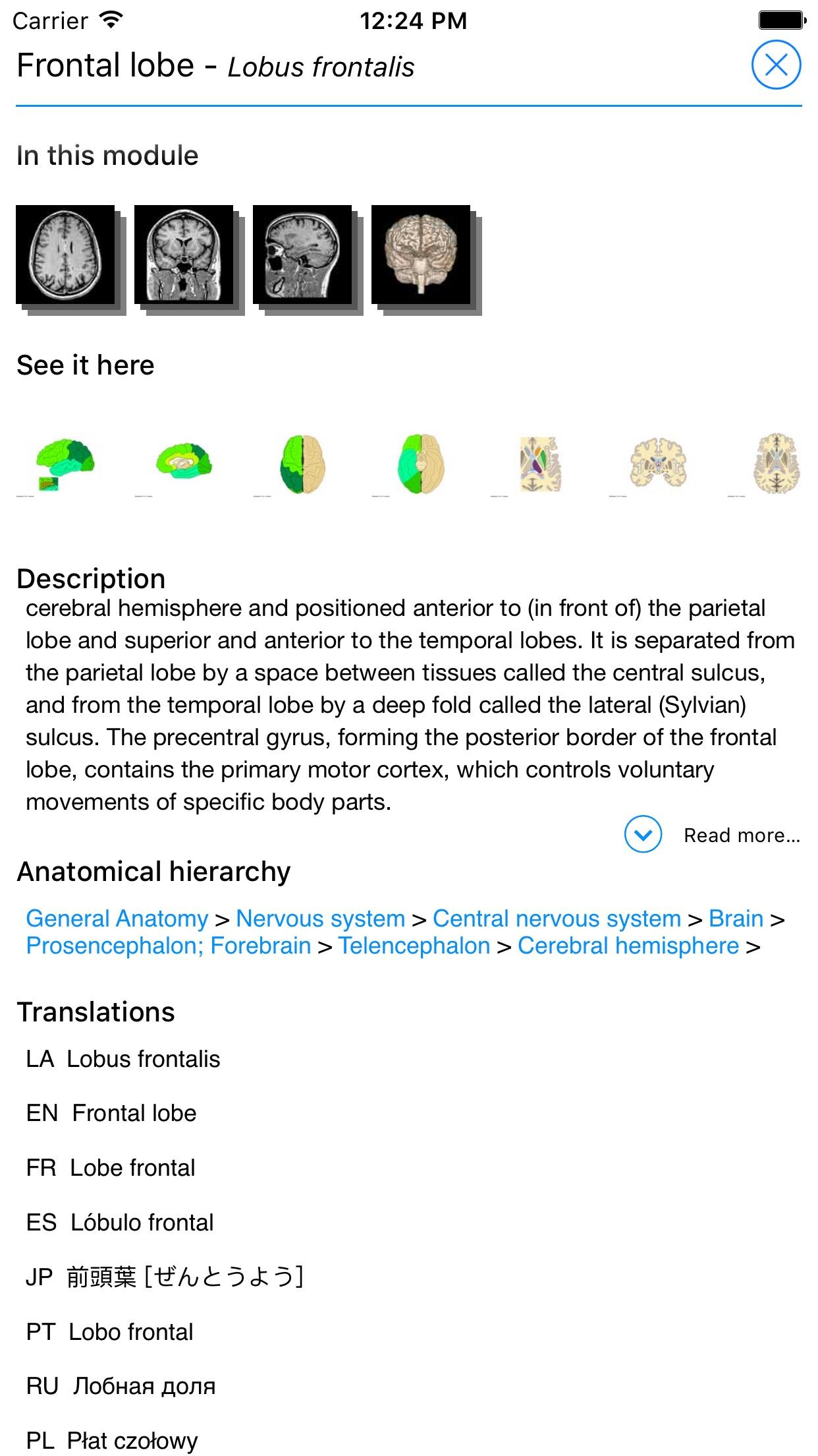 IMAIOS e-Anatomy Screenshot
