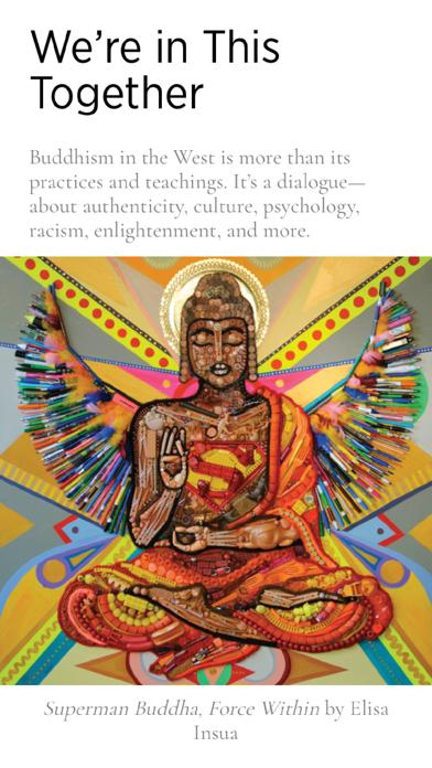 Buddhadharma review screenshots