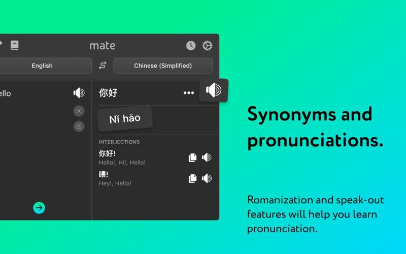 Mate: Universal Tab Translator Screenshot 06 xltr7n