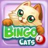 Bingo Cats - iPadアプリ