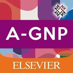 AGNP: Adult Gero NP Exam Prep
