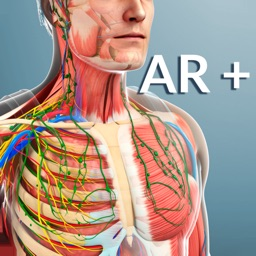 AR Human Anatomy
