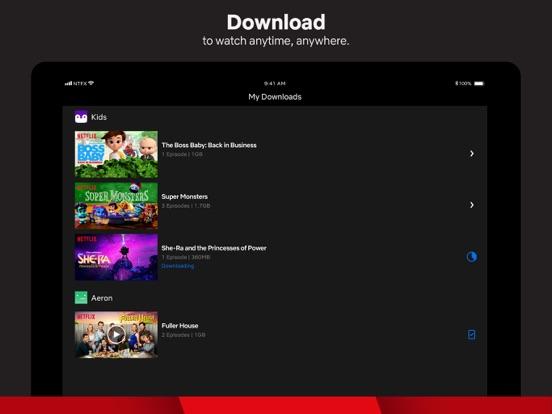 iPad Image of Netflix