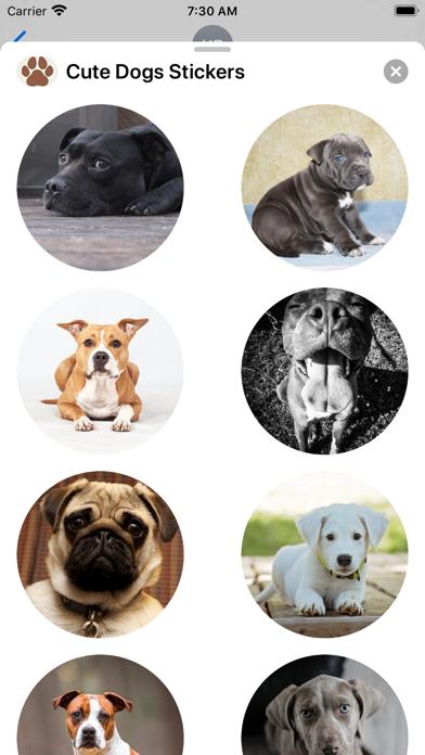 Dogs Sticker Collection Screenshot
