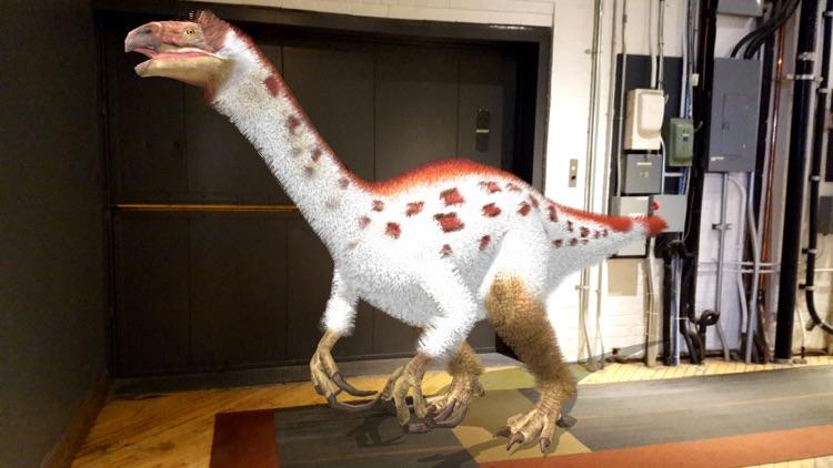 Dino Dan: Dino Cam screenshot-7