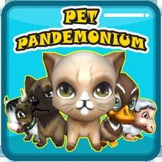 Activities of PET PANDEMONIUM: 3D SIMULATOR