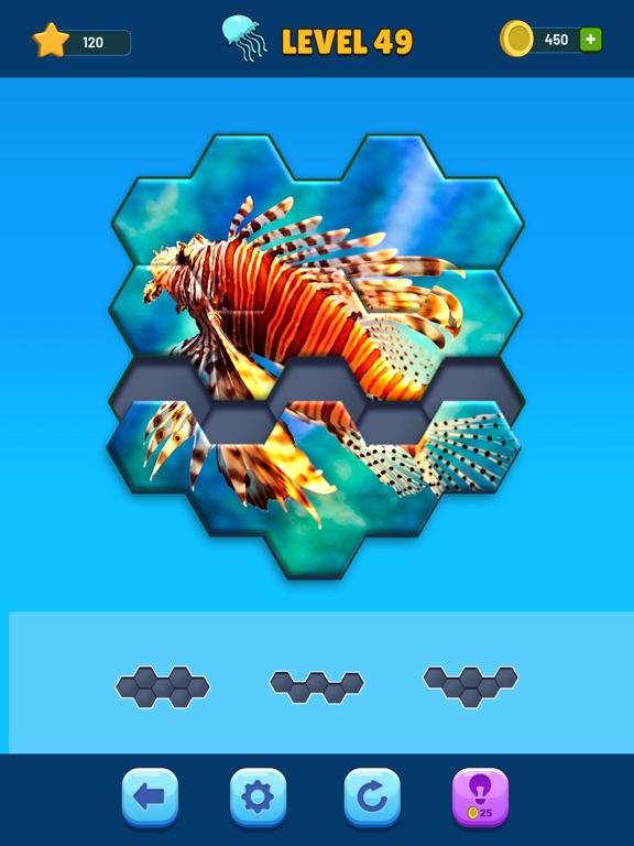 Hexa Jigsaw Puzzle™ screenshot 7