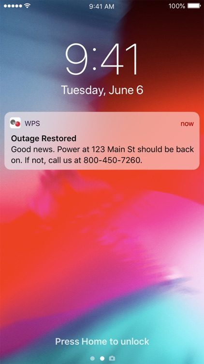 Wisconsin Public Service (WPS) screenshot-6