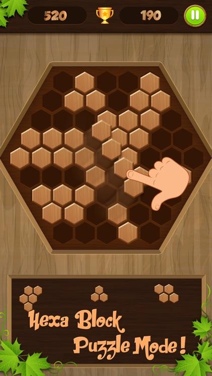 Wooden Block Jigsaw