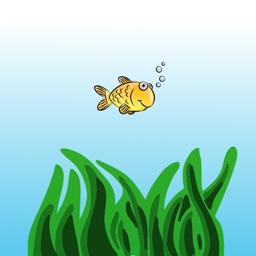 Swish Fish