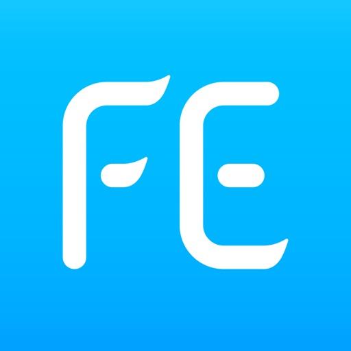 FE Pro