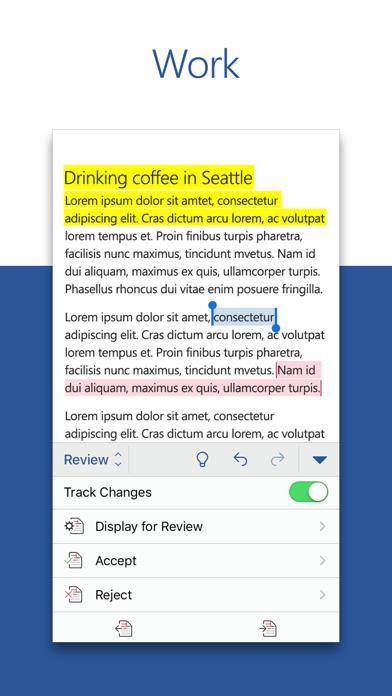 Microsoft Word app image