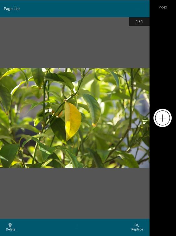 OnBase Mobile 17 for iPad screenshot-3
