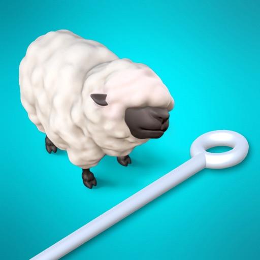 Pins & Sheeps