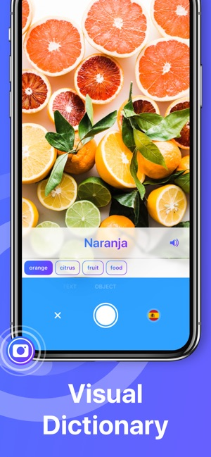 Translate App For Text Voice On The App Store