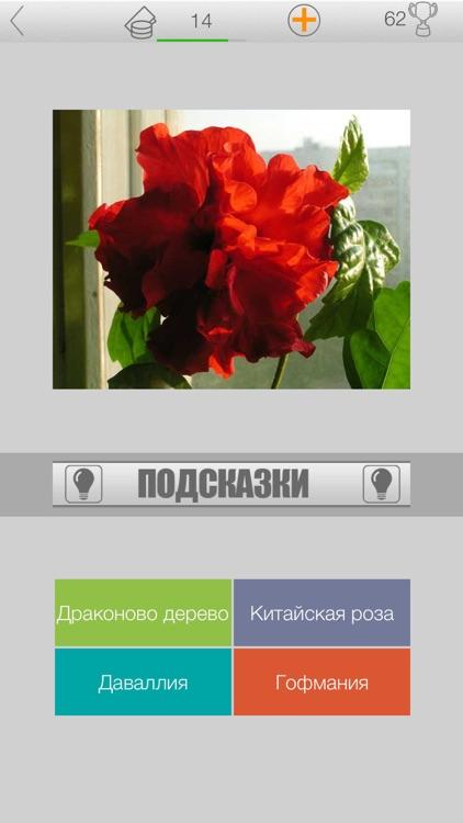 Ботаническая викторина screenshot-4