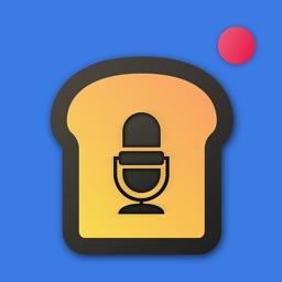 VoiceToaster - Voice Changer