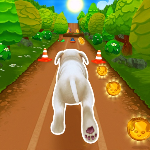 Pet Run