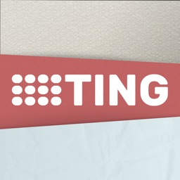 Ting - Percussion Instrument