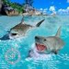 Scuba & Shark Game – Hunting