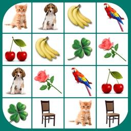 Brain game. Picture Match