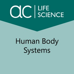 Systems in the Human Body