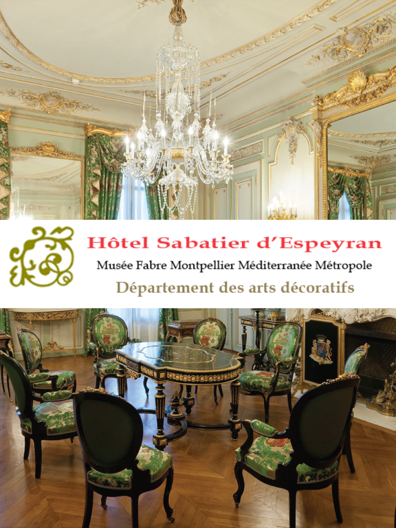 Hôtel Sabatier d'Espeyran screenshot 5