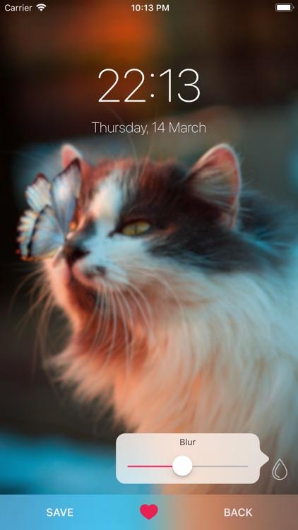 Cat Wallpapers ° screenshot-5
