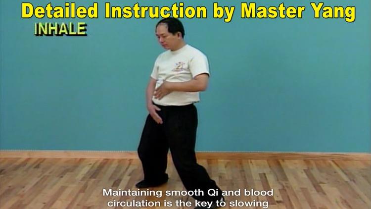 Qigong Massage: Partner screenshot-3