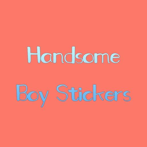 Handsome Boy Stickers