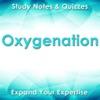 点击获取Oxygenation Exam Review : Q&A