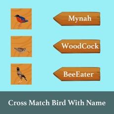 Activities of CrossMatchBirdWithName