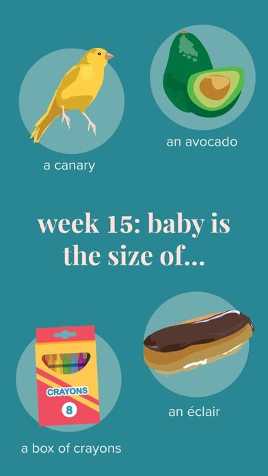 Screenshot for Ovia Pregnancy Tracker in Lebanon App Store