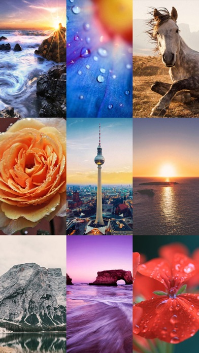 Download Beautiful HD Wallpapers 50000+ for Android