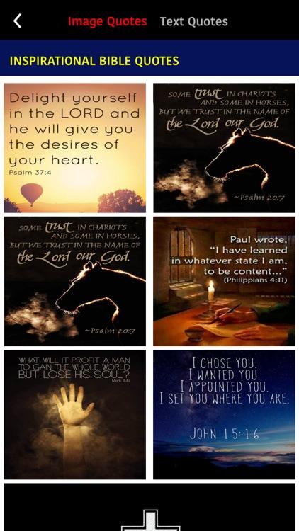 La Biblia del Oso con screenshot-6