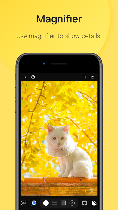Pico · Image Annotation screenshot four