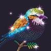 钻石涂涂乐 - 梦幻花园涂色减压游戏