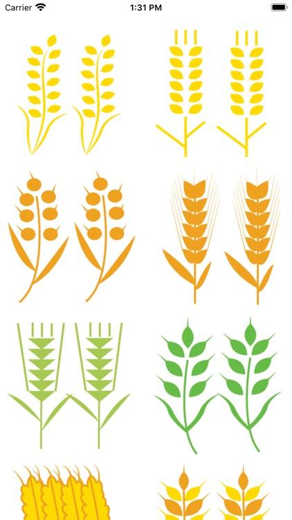 小麦转 screenshot-0