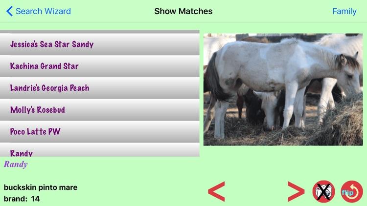 Chincoteague Pony Names screenshot-3