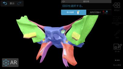 筋肉とキネシオロジー ScreenShot2