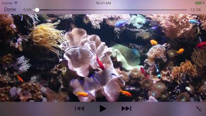 Aquarium Videosのおすすめ画像3