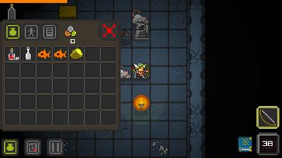 Quest of Dungeons Screenshots