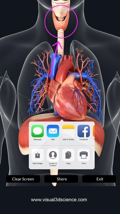 My Respiratory System Anatomy screenshot-5
