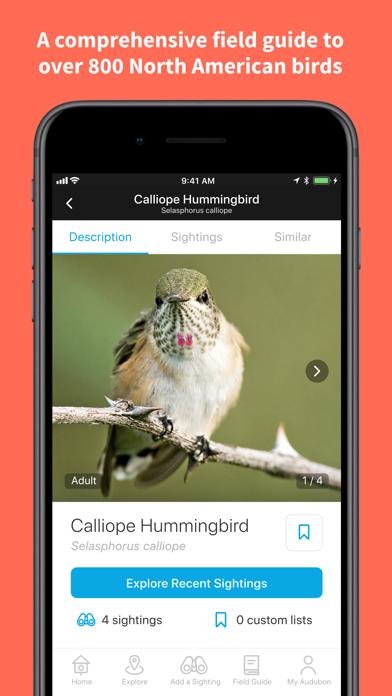 Audubon Bird Guideのおすすめ画像2
