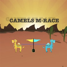 Activities of CAMELS M-RACE